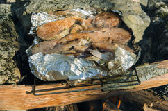 Fish barbecue. In forest picnic royalty free stock photo
