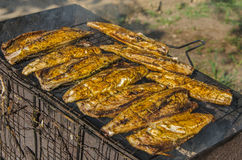 Fish barbecue Royalty Free Stock Photo