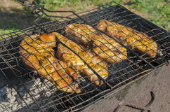 Fish barbecue. In forest picnic stock photography