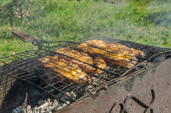 Fish barbecue. In picnic in garden royalty free stock photography