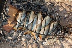 Fish barbecue. Small sea fish barbecue charcoal stock image