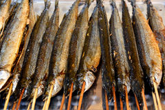 Fish barbecue Stock Photography