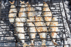 Fish in barbeque. Royalty Free Stock Photos