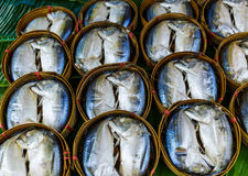 Fish in barrels for sell at market Royalty Free Stock Photography