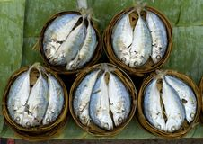 Fish  baskets at the Market in Luang Prabang, Laos Stock Photos