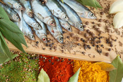 Fish with bay leaves and spice Royalty Free Stock Images