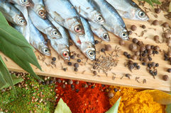Fish with bay leaves and spice Stock Image
