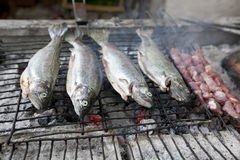 Fish on BBQ Stock Photos