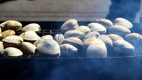 Fish BBQ. Shellfish cooking on a BBQ set stock photos