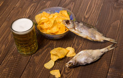 Fish with beer and chips Royalty Free Stock Photography