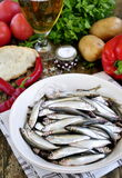 Fish and beer Royalty Free Stock Images