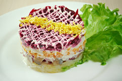 Fish and beets  salad Stock Image