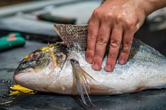 Fish being cut open. On a market in France Stock Images