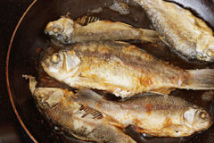 Fish is being fried on the frying pan Royalty Free Stock Photo