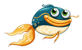 A fish with big eyes. Illustration of a fish with big eyes on a white background Royalty Free Stock Photos