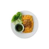 Fish Biryani Stock Photography