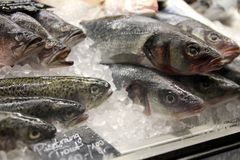 Fish bistro Stock Photos