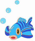 Fish blowing bubbles Stock Images