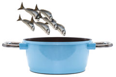 Fish Blue Pan Royalty Free Stock Image