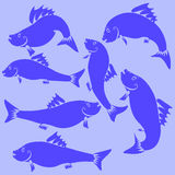 Fish Blue Silhouettes. On Blue Background Royalty Free Stock Photo
