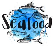 Fish on a blue watercolor bsckground. Vintage illustration with shrimp and fish on a blue watercolor bsckground. Seafood lettering Royalty Free Stock Photography