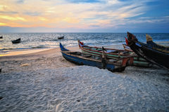 Fish boats Royalty Free Stock Image