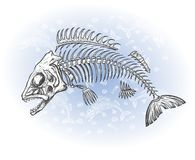 Fish bone drawing Stock Photo