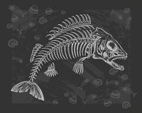Fish bone drawing Stock Photography