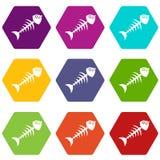Fish bone icon set color hexahedron. Fish bone icon set many color hexahedron isolated on white vector illustration Stock Photography