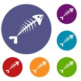 Fish bone icons set. In flat circle reb, blue and green color for web Stock Image