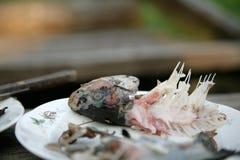 Fish bones. Fishbones with head on plate Royalty Free Stock Photo