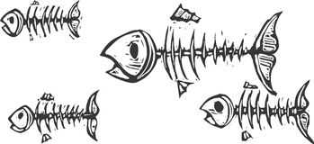 Fish Bones. Ghosts and skeletons of fish swimming together Stock Photo