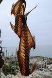 Fish bones hanging Royalty Free Stock Images