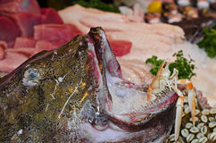 Fish at Borough Market Royalty Free Stock Image