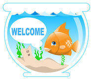 Fish in the bowl. Funny golden fish in the bowl Royalty Free Stock Image