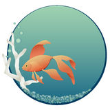 Fish bowl Stock Photography