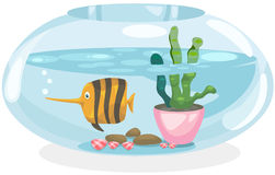Fish bowl. Illustration of isolated fish bowl on white background Royalty Free Stock Images