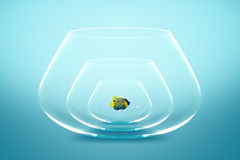 Fish bowl Royalty Free Stock Photography
