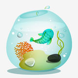 Fish bowl Royalty Free Stock Photos