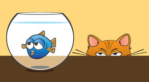 Fish Bowl. Fish in bowl being stalked by cat Royalty Free Stock Photos