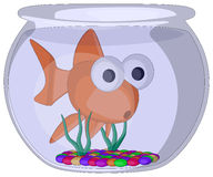 Fish Bowl. Vector Artwork (isolated on white background Royalty Free Stock Image