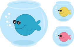 Fish Bowls. With different colored fish Stock Photo