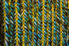 Fish braid Stock Photos