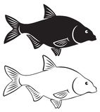 Fish bream. The figure shows a silhouette of fish bream Royalty Free Stock Images