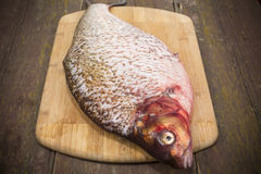 Fish bream Royalty Free Stock Photo