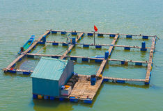 Fish breeding farm in the south of Vietnam Royalty Free Stock Images