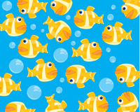 Fish and bubble in water. Water fish background and bladders of the air Stock Images