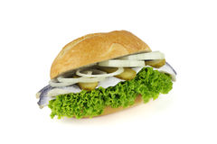 Fish bun Stock Images