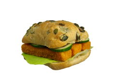 Fish burger Stock Image