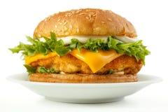 Free Fish Burger Royalty Free Stock Photos - 39875568